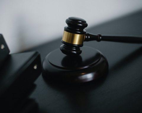 grillo - tribunale