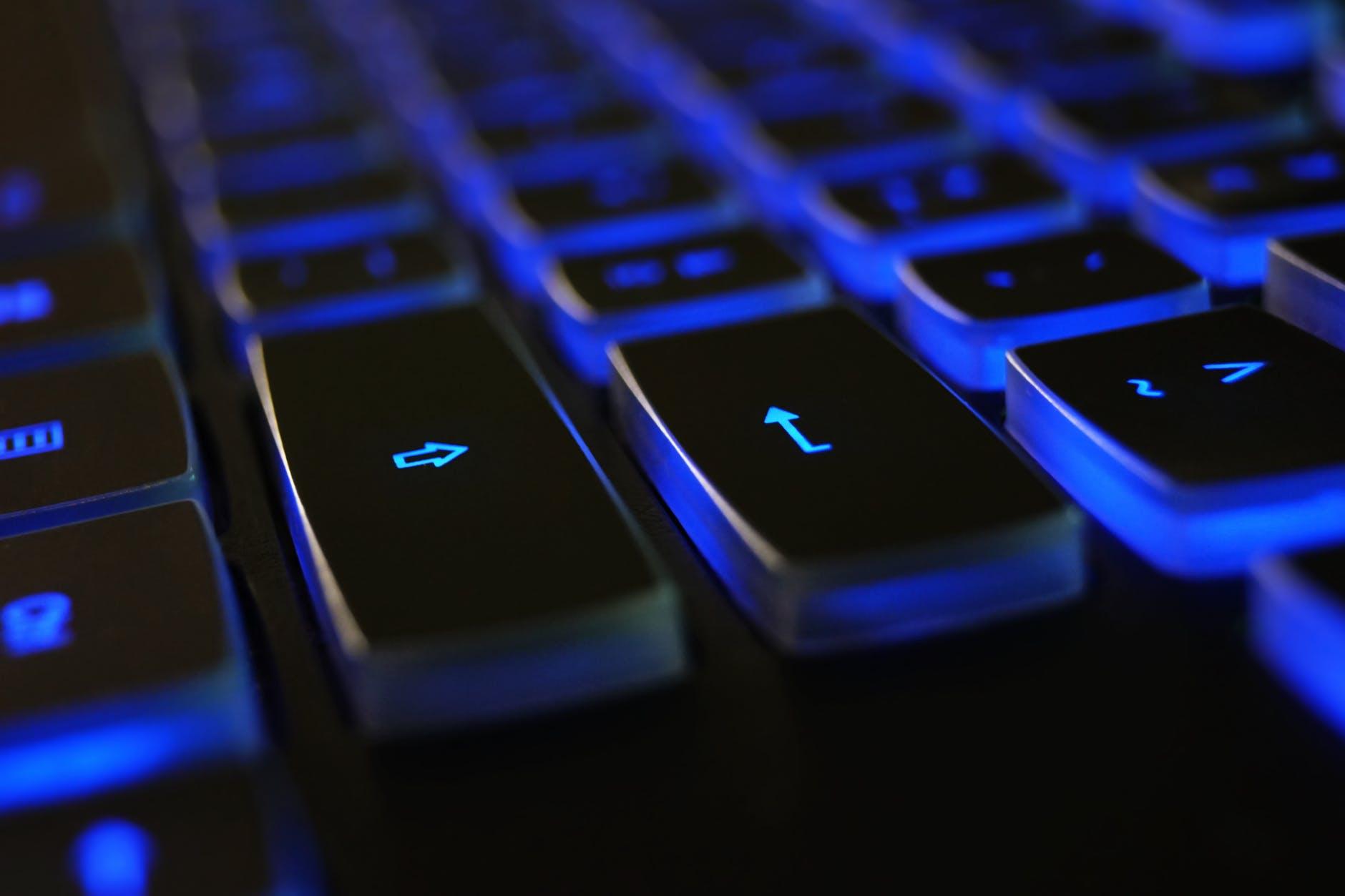 terrorismo - online